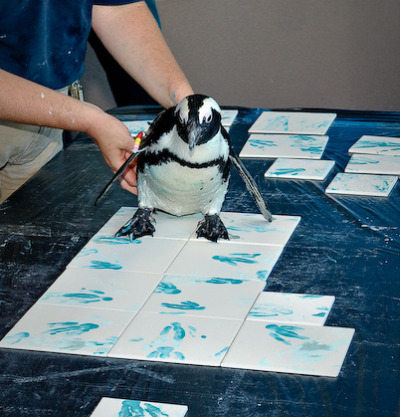 Painting penguin mystic aquarium 2