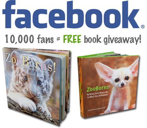 Facebook-10K-giveaway