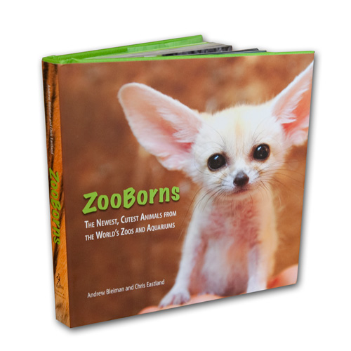 ZooBorns for all ages