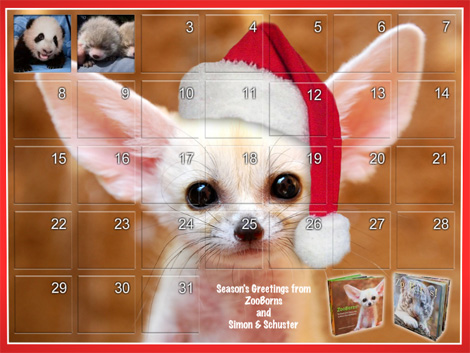 Zooborns holiday advent-style calendar