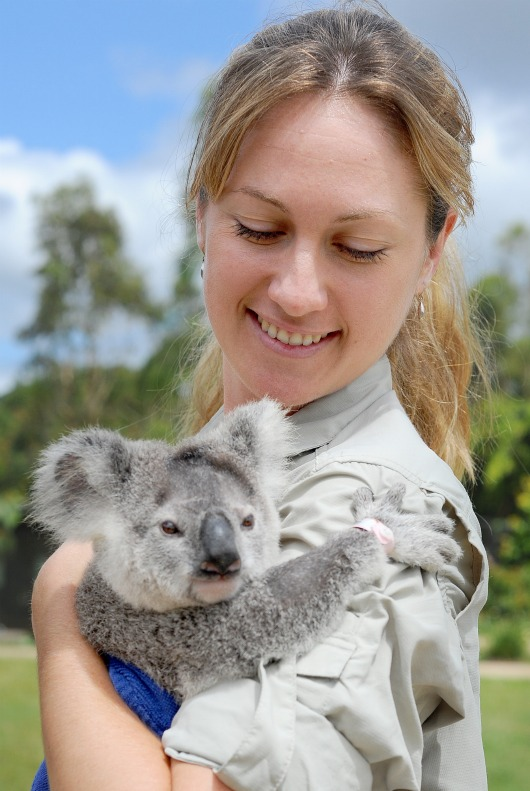 Frodo the Koala with keeper