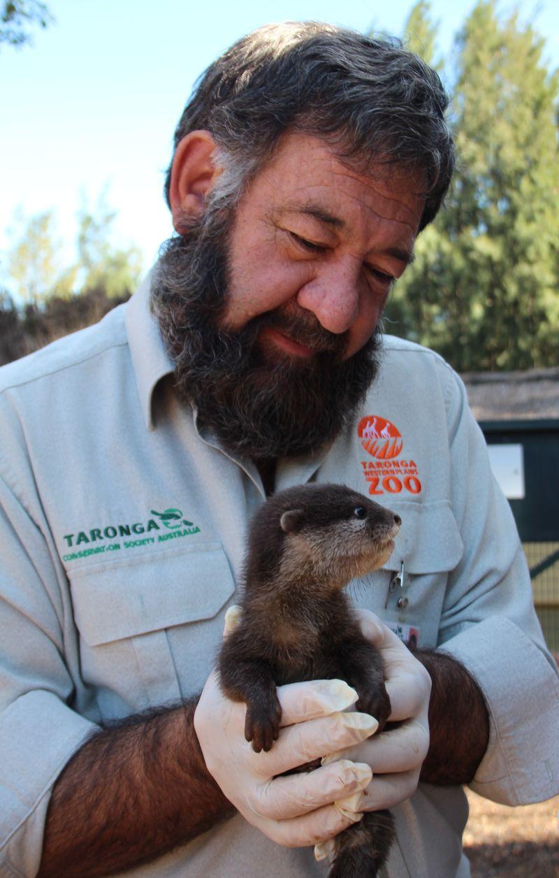 Otter pups_6.3.15_MT (5)