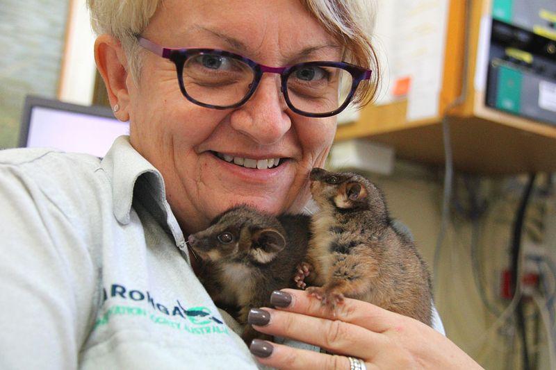 2_Possum Twins (6)
