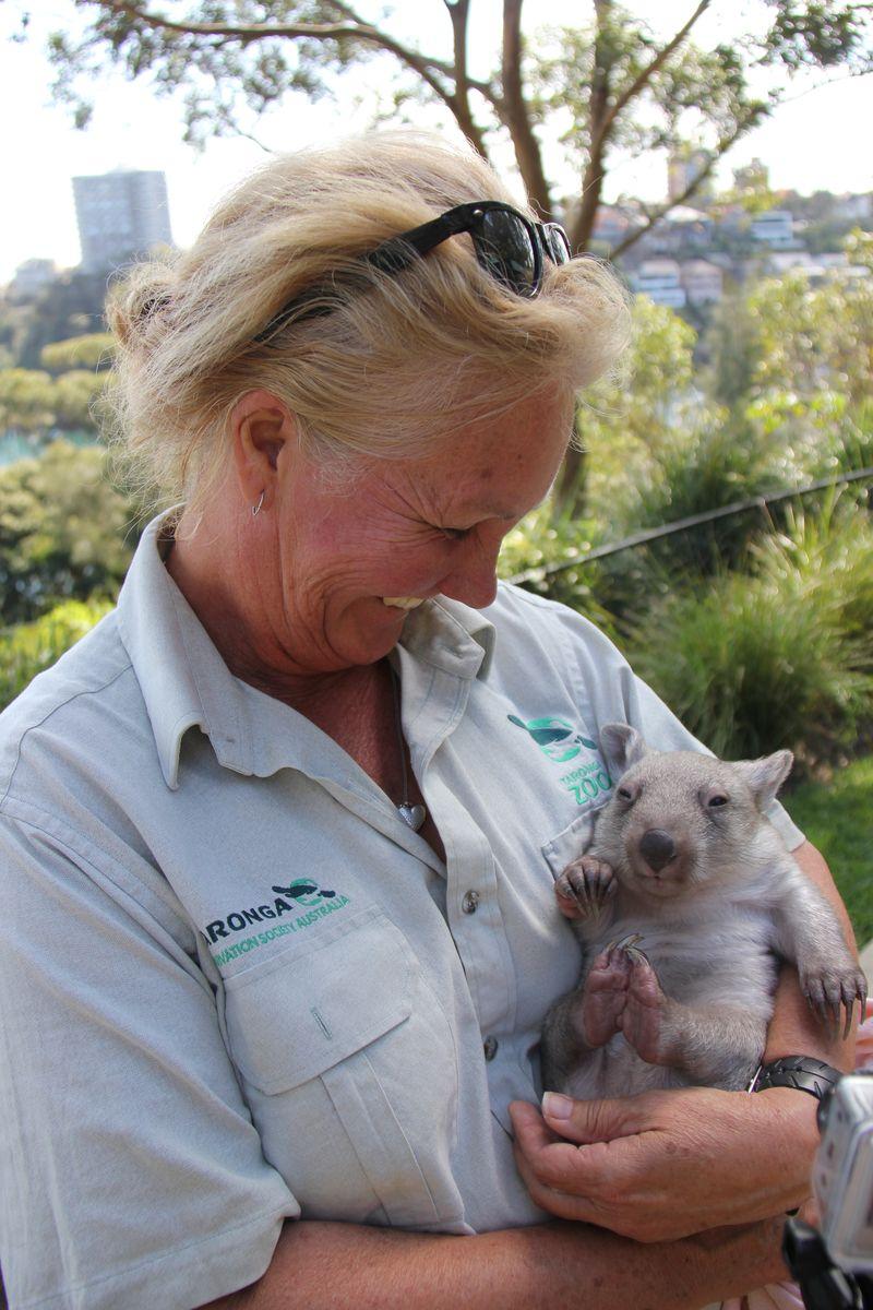 Chloe the Wombat (7)