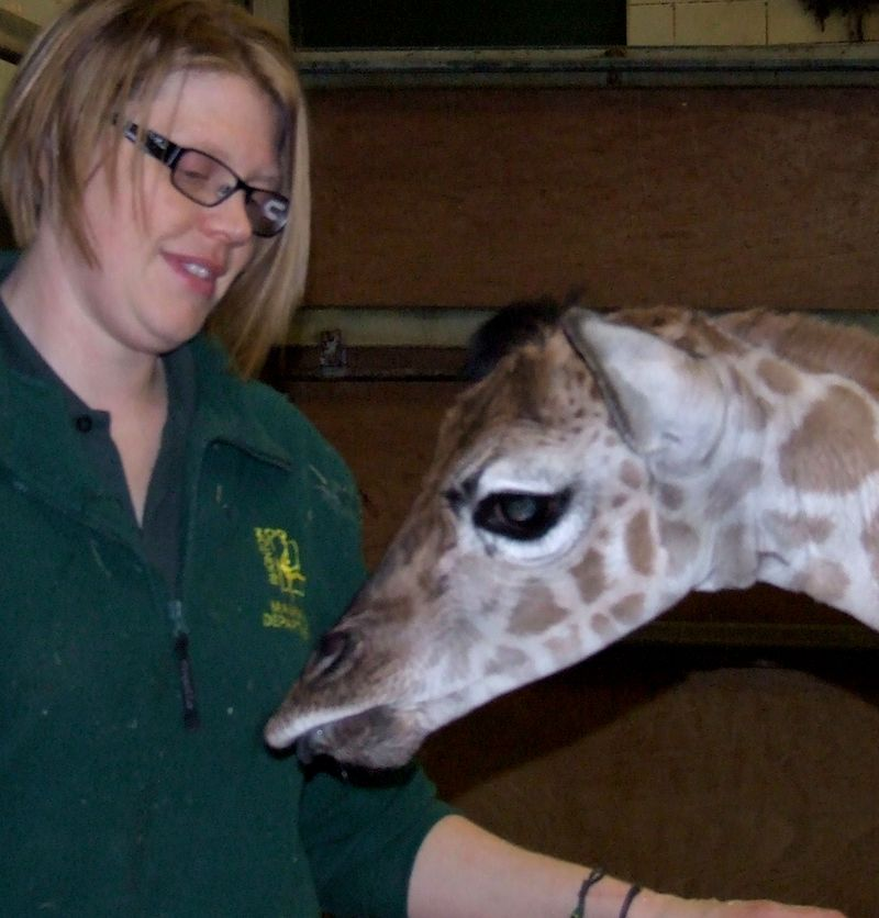 2015 01 PZ Helen Neighbour and giraffe baby 1