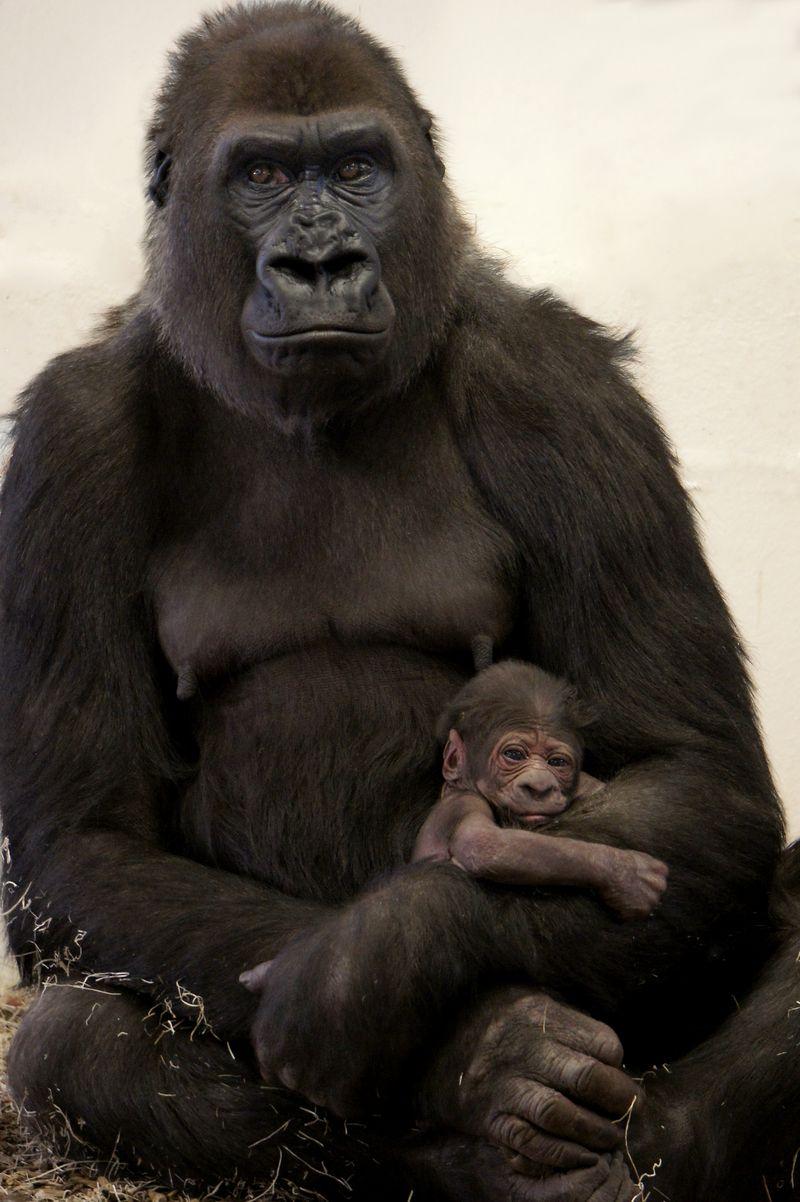 Dara and Infant 1 (2)
