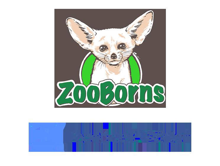 744px-Facebook_Watch.svg