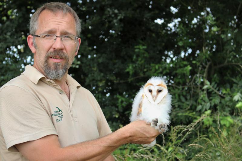 Credit Marwell Wildlife - Dr Matt Stevens & barn owl chick - 2019