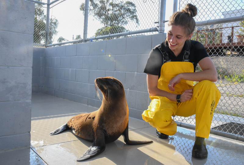 Isla and Zoo Trainer Sierra at Channel Islands Marine & Wildlife Institute (1 of 1)